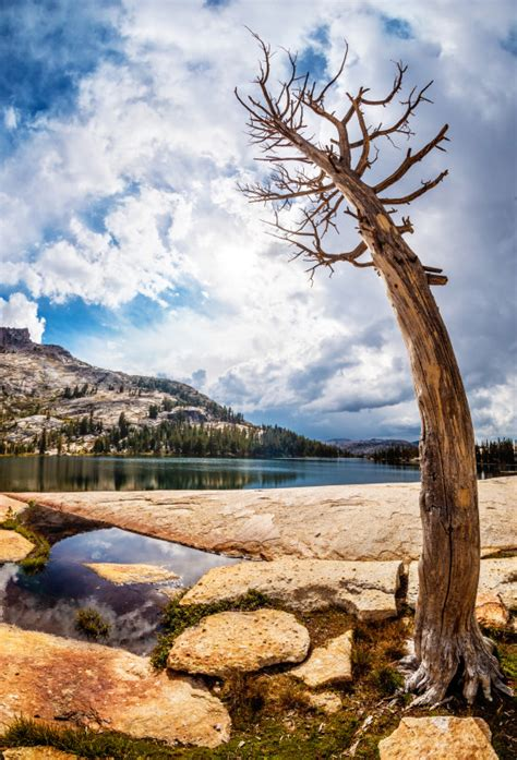Hiking John Muir Trail To Cathedral Lakes In Yosemite