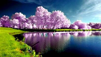 Computer Spring Background Backgrounds Wallpapers Wallpaperaccess