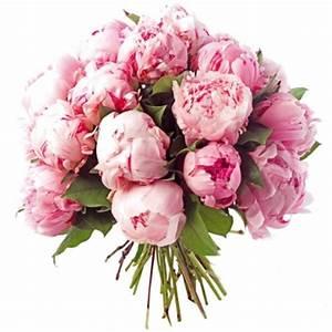 Langage Des Fleurs Pivoine : signification pivoine pi style le langage des fleurs symbolique de la pivoine maison ~ Melissatoandfro.com Idées de Décoration