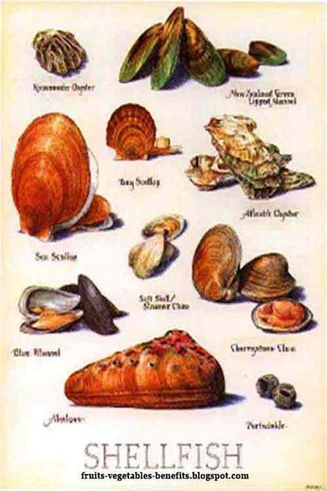 fruits vegetables benefits benefits  eating shellfish