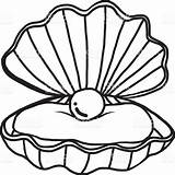 Pearl Clipart Oyster Shell Drawing Getdrawings Clipartmag sketch template