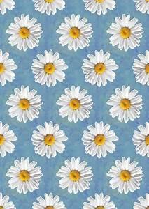wallpaper flores | Tumblr