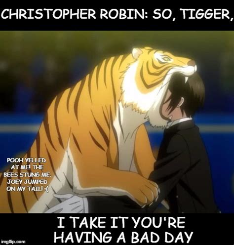 Christopher Robin Meme - the wonderful thing about tiggers is you re the only one imgflip