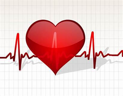 Heart Beating Graphics Vector Freevector Illustration During