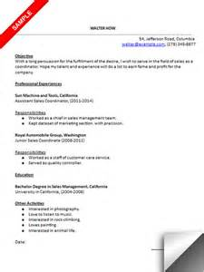 sales and marketing coordinator resume exles sales coordinator resume sle