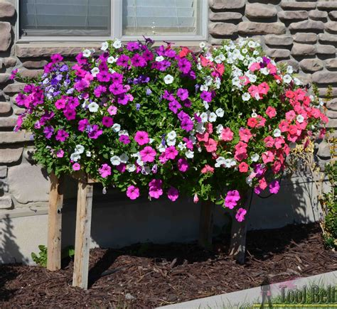 bloemen in box her tool belt cascading flower pallet planter box
