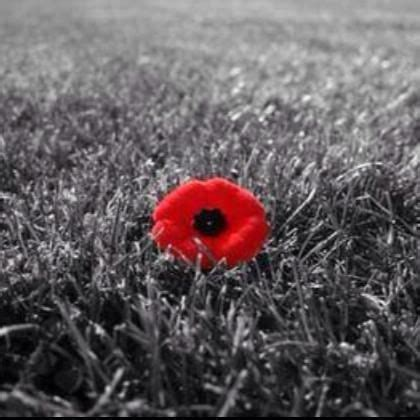 17 Best Images About Lest We Forget On Pinterest