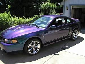For Sale: 2004 Mustang SVT Cobra (Mystichrome) Only 7,567 Miles | SVTPerformance.com