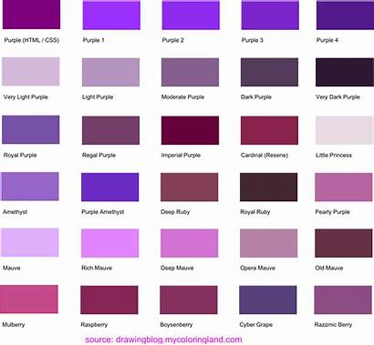 Purple Shades Names Different Colors Buttons Chart