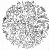Coloring Pages Adults Adult Printable Abstract Colouring Books Secret Mandala Stress Garden Printer Colour Fun Drawing sketch template