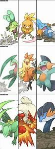 Gen 3 Starter Pokemon And Evolutions Pokemon Hoenn