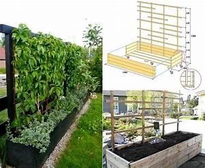 Sichtschutz Für Garten Und Terrasse : welche pflanzen als sichtschutz f r garten und terrasse ~ Michelbontemps.com Haus und Dekorationen