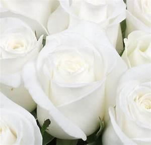 Fleur Rose Et Blanche : bouquet de fleurs roses blanches fleuriste bulldo ~ Dallasstarsshop.com Idées de Décoration