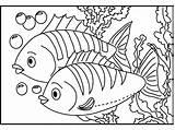 Coloring Aquarium Fish sketch template