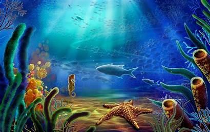 Ocean Under Water Daily Wallpapers Sea Update