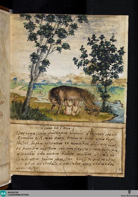 woelfin saeugt romulus und remusshe wolf suckles romulus