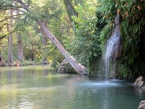 Krause Springs Natural Pool - Picture of Krause Springs ...