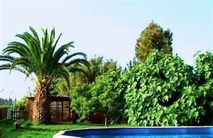 Haus Kaufen Teneriffa : finca nahe santa cruz de la palma mit restaurant und ~ Lizthompson.info Haus und Dekorationen