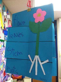 parts   plant flip book  kinder learning garden tpt