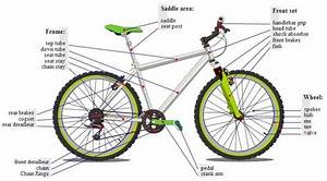 How To Build Your Own Mountain Bike  10 Easy Steps With