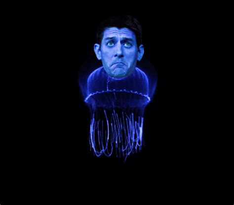 Jellyfish Mood L Troubleshooting by Downwithtyranny Paul S Personal Brand Continues To
