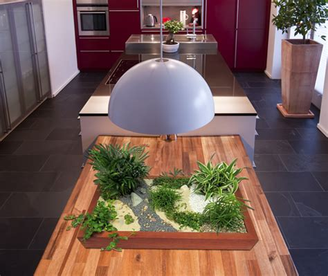 Japanischer Garten Wohnung by Zimmergarten Ein Indoor Minigarten F 252 R Wohnungen Und