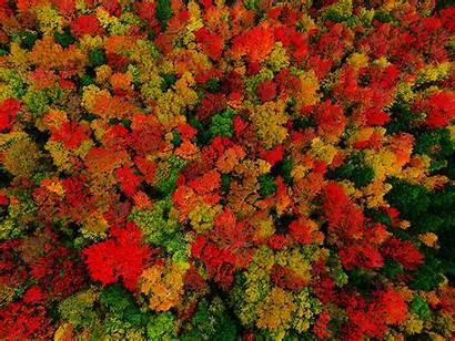 Vermont Foliage Fall Colors Peacham Autumn Herbstliches