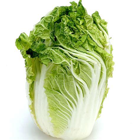 chou chinois cuisine tous les légumes de saison à cuisiner au mois de février