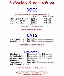 Pamper4paws dog grooming salon westchester ny dog for Professional dog walker rates
