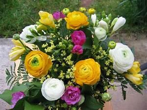 Bilder Von Blumenstrauß : bild 10 aus beitrag fotos mit verschiedenen blumen ~ Buech-reservation.com Haus und Dekorationen