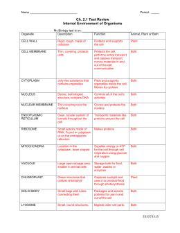 cell organelles worksheet worksheets for all