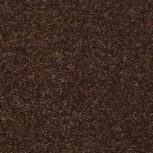 trafficmaster palmdale i color mocha nut 15 ft carpet With flooring palmdale ca