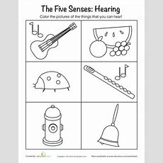 Sense Of Hearing  Mfw  K  Us (five Senses)  Senses Preschool, 5 Senses Preschool, Five