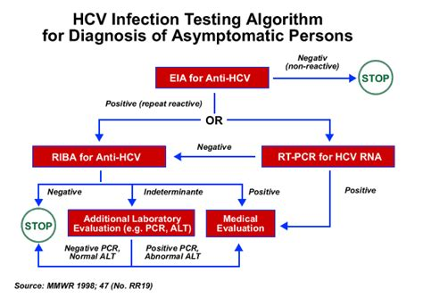 Hepatitis ฺc Virus Disease Hcv  โรคไวรัสตับอักเสบ ซี. Marketing Agencies Boston Saa Online Meetings. Benjamin Smith Teaching Art Institute Student. Structured Data Vs Unstructured Data. Bankruptcy Lawyers In Chicago Il. Delivery In Cambridge Ma What Is Gynecologist. Estrogen Receptor Positive Breast Cancer Prognosis. Wristband Design Your Own Cruise Credit Cards. Construction Worker Education