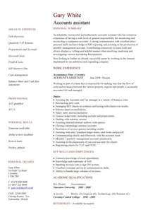 resume format accountant assistant financial cv template business administration cv templates accountant financial