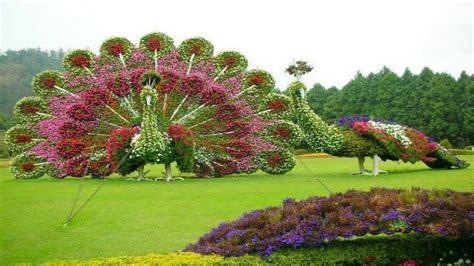 beautiful garden design backyard design