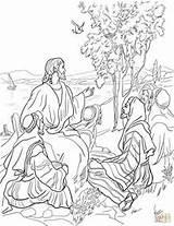 Mustard Seed Parable Coloring Bible Gleichnis Printable Das Parables Sunday Senfkorn Vom Colorear Tree Jesus Craft Ausmalbild Ausmalbilder Bibel Dibujo sketch template