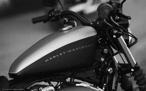 Harley Davidson Iron 1200 4k Wallpapers by Wallpaper Harley Davidson Sportster Xl1200n
