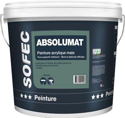 peinture professionnelle pour plafond peinture professionnelle plafond peinture antirouille