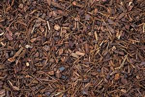 decorative bark - 28 images - alf img showing gt