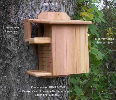 squirrel house yahoo image search results    pinterest trees