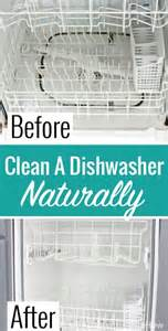 cleaning dishwasher with vinegar bizarre cleaning hacks that will change your life daily mail online