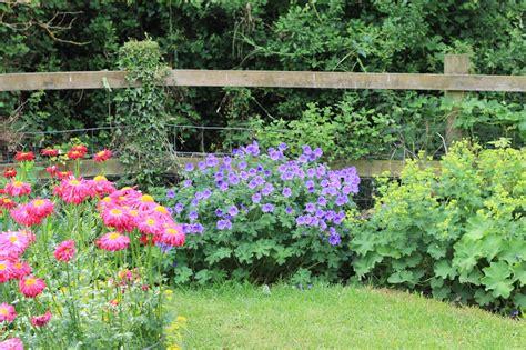 flower bed ideas for sun perennial garden ideas for full sun
