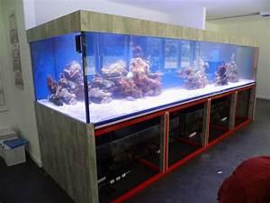 L Form Aquarium : aquarium xxl 250x120x100cm lxtxh 3000 liter vorortmontage diamantaquarien online shop ~ Sanjose-hotels-ca.com Haus und Dekorationen