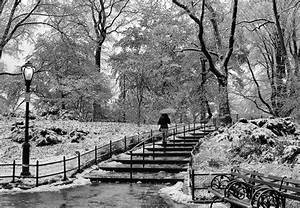 Birthday Calendar Download Photo Entry Winter In Central Park