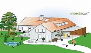 Mäuse Bekämpfen Haus : m use vertreiben tipps vom kammerj ger ~ Michelbontemps.com Haus und Dekorationen
