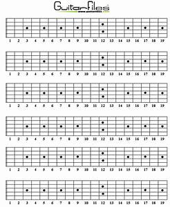 Blank Guitar Fretboard Diagrams