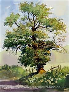 anthony forster classes watercolour painting tuition