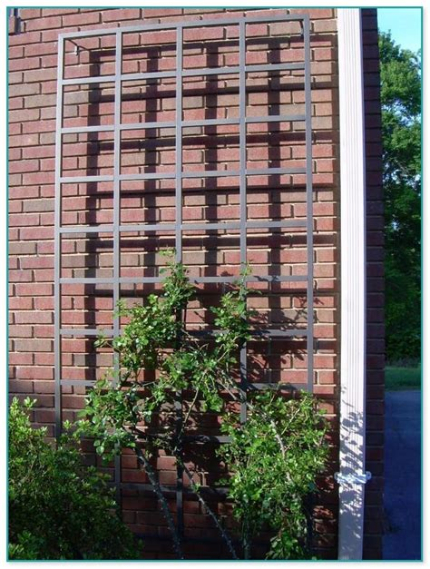 metal garden trellis designs