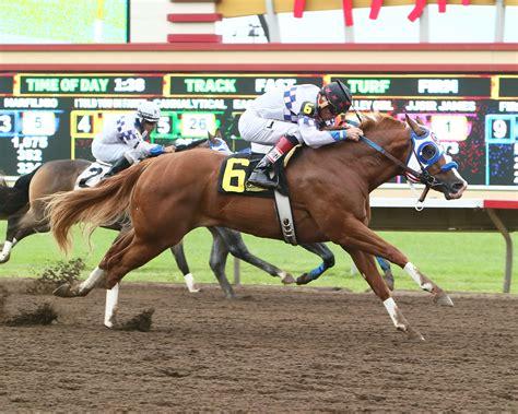horse quarter racing coady futurity eagle minnesota